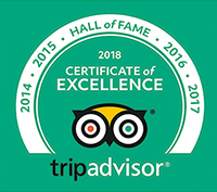 Hall of Fame - Certificate of Excellence 2018